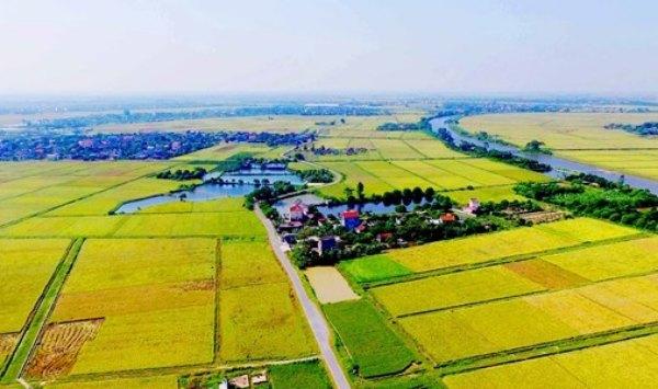 đất phi nông nghiệp là đất gì có được xây nhà không
