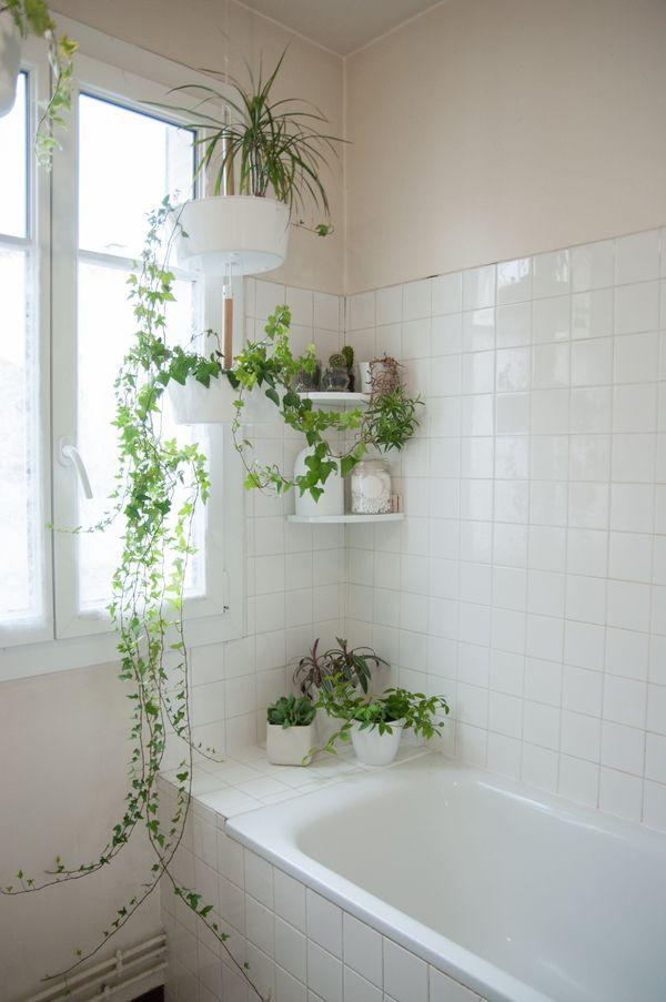 nhà tắm kết hợp cây xanh