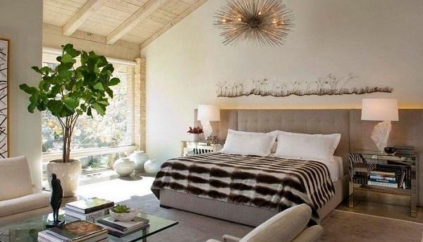 chọn cây phong thuỷ cho phòng ngủ