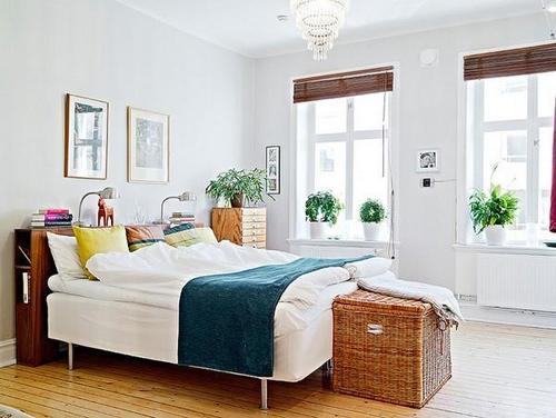 có nên đặt cây xanh trong phòng ngủ không