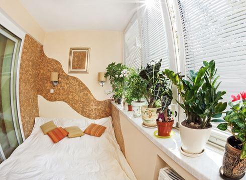 không nên đặt nhiều cây xanh trong phòng ngủ