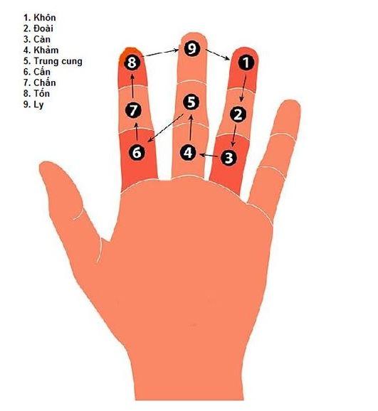 cách tính phạm kim lâu theo bàn tay